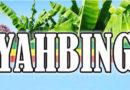 Iyahbingi Yard sarà presente al Roots and Culture Festival 2019